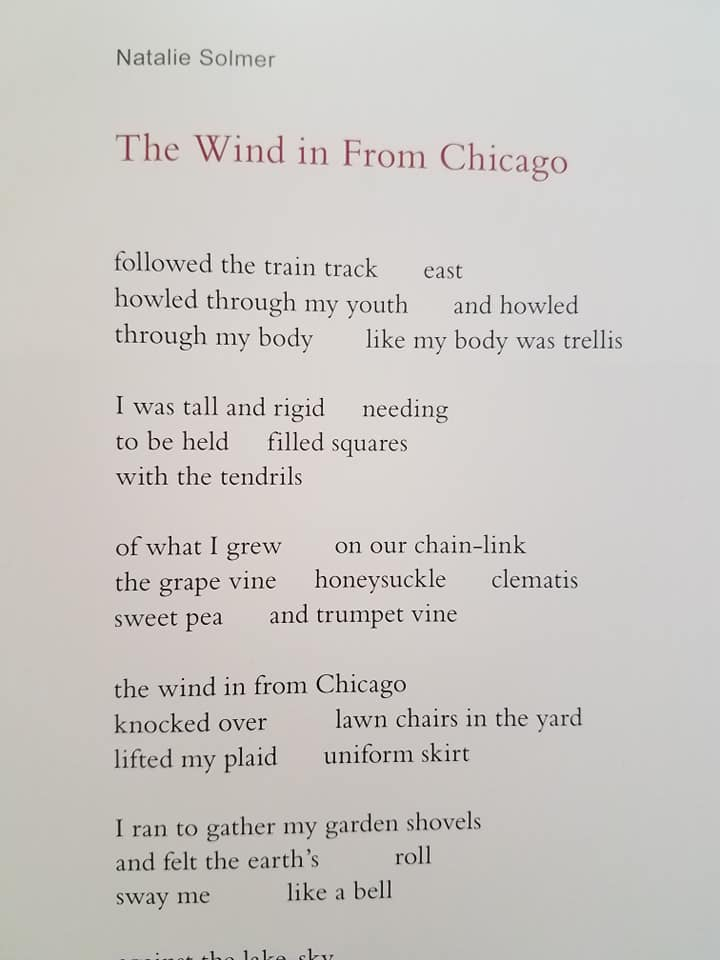 wind from chicago1